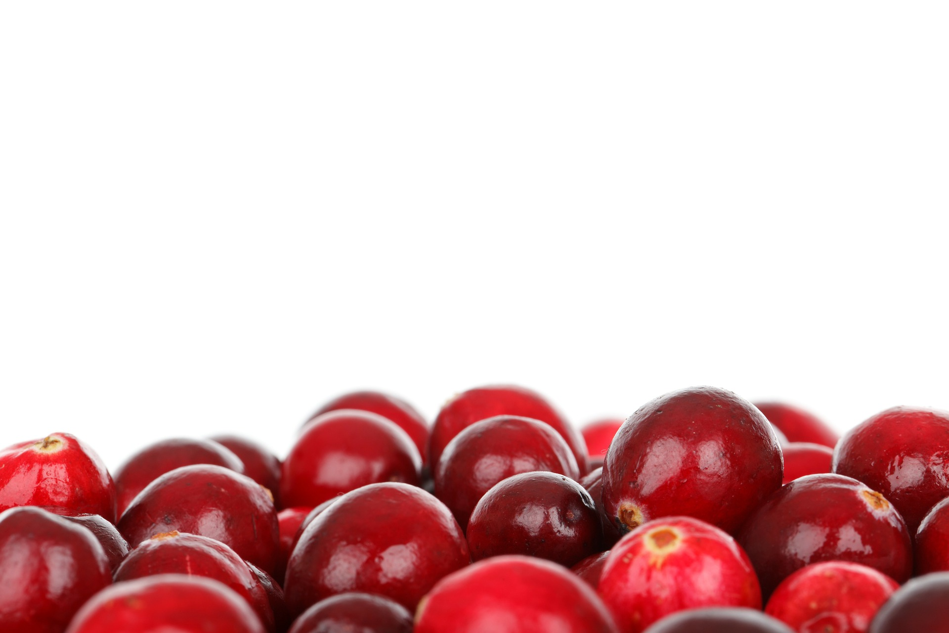 cranberries: uses for cranberries besides sauce